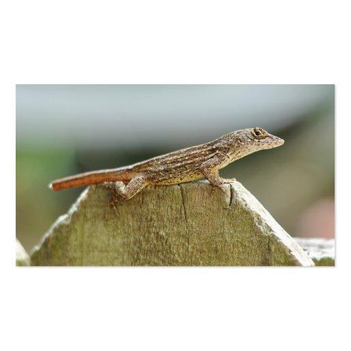 Fotografía fresca del lagarto tarjetas de visita
