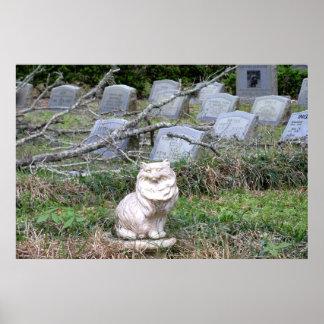 Fotografía grave del poster del marcador del gato