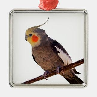 Fotografía gris y amarilla del Cockatiel del Adorno Navideño Cuadrado De Metal