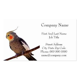 Fotografía gris y amarilla del Cockatiel del masco Plantilla De Tarjeta De Visita