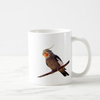 Fotografía gris y amarilla del Cockatiel del masco Taza De Café