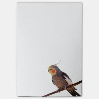 Fotografía gris y amarilla del Cockatiel del Notas Post-it®