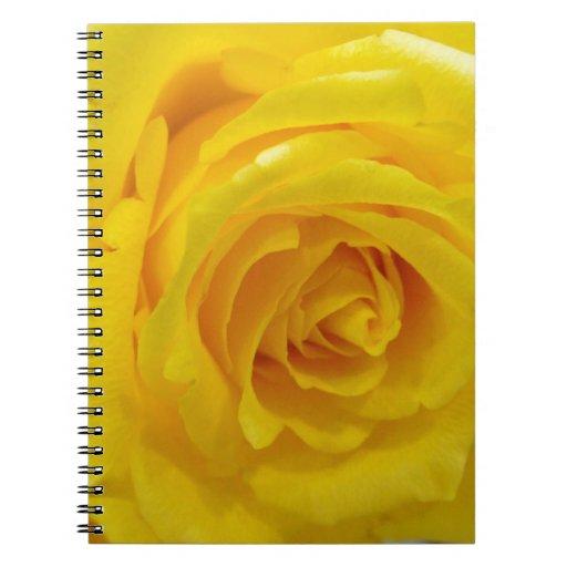 fotografía hermosa de la flor del rosa amarillo libro de apuntes con espiral