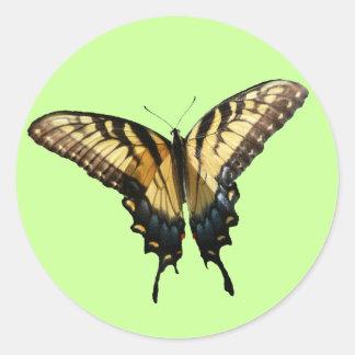 Fotografía hermosa de la mariposa III de Pegatina Redonda