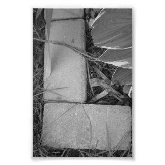 Fotografía L5 4x6 blanco y negro de la letra del Cojinete