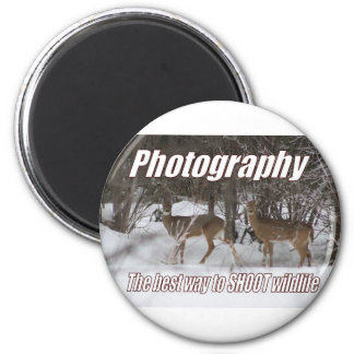 Fotografía, la mejor manera DE TIRAR fauna Imanes
