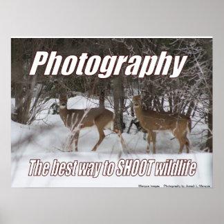 Fotografía, la mejor manera DE TIRAR fauna Impresiones