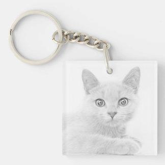 Fotografía LINDA ESTUPENDA del retrato del gatito Llavero Cuadrado Acrílico A Una Cara