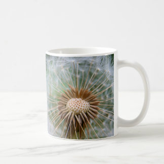 Fotografía macra de la naturaleza de la flor del taza de café