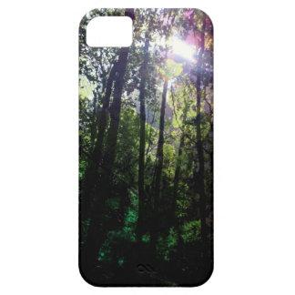 Fotografía mágica del árbol de la llamarada de la iPhone 5 Case-Mate cárcasa