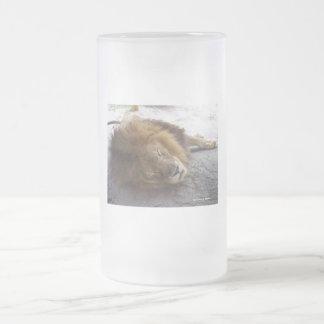 Fotografía masculina de la opinión de la cabeza de taza cristal mate