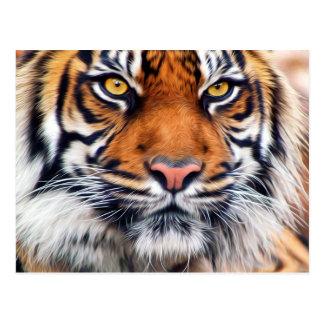 Fotografía masculina de la pintura del tigre postal
