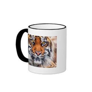 Fotografía masculina de la pintura del tigre taza de dos colores