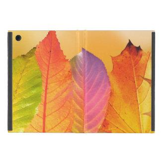 Fotografía moderna colorida de la bella arte de iPad mini funda