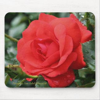 Fotografía Mousepad de la flor del rosa rojo Alfombrilla De Ratón