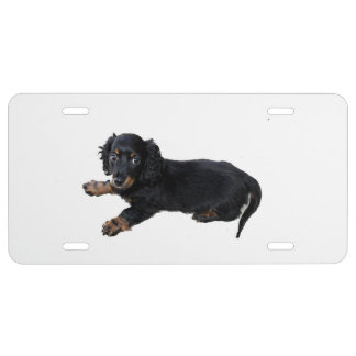 Fotografía negra del perrito de cocker spaniel del placa de matrícula