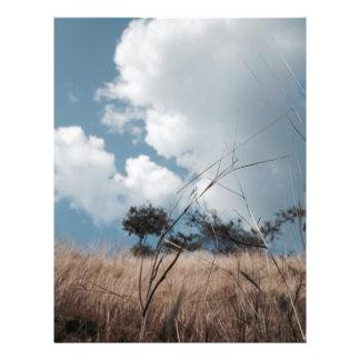 Fotografía paisaje plantilla de membrete