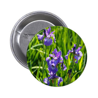 Fotografía púrpura salvaje de Digitaces del iris Pins