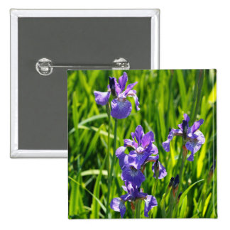 Fotografía púrpura salvaje de Digitaces del iris Pin