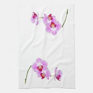 Fotografía radiante del primer de la orquídea toallas