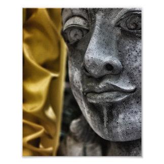 Fotografía resistida de la seda de la cara y del a arte con fotos