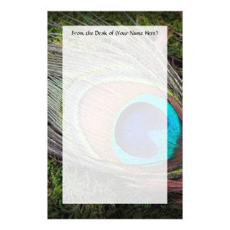 Fotografía rica, elegante de la pluma del pavo  papeleria de diseño