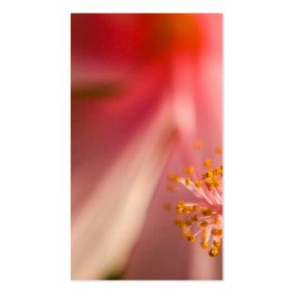 Fotografía rosada de la macro del estambre de la tarjetas de visita