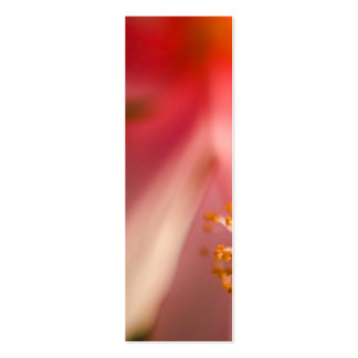 Fotografía rosada de la macro del estambre de la tarjetas de visita mini