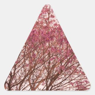 Fotografía rosada del árbol pegatinas