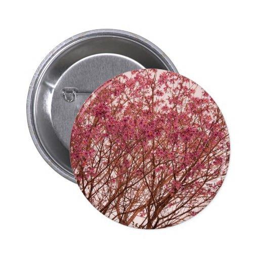 Fotografía rosada del árbol pins