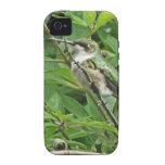 Fotografía Rubí-Throated del colibrí iPhone 4 Carcasa
