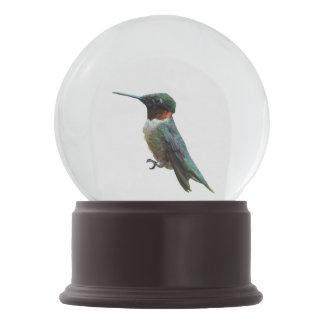 Fotografía Rubí-Throated del pájaro del colibrí Bola De Nieve