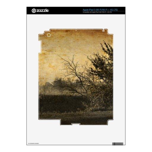 Fotografía rústica del vintage del país iPad 3 pegatina skin