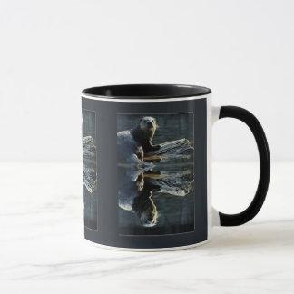 Fotografía salvaje de la nutria de la belleza de taza