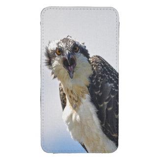 Fotografía Screeching de la fauna de Osprey Bolsillo Para Móvil