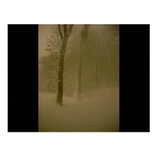 Fotografía sin tocar 1 (nevada) de la ventisca postal