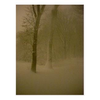 Fotografía sin tocar 1 (nevada) de la ventisca postales