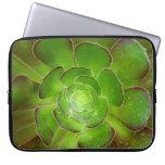 Fotografía suculenta verde radiante de la macro de fundas portátiles