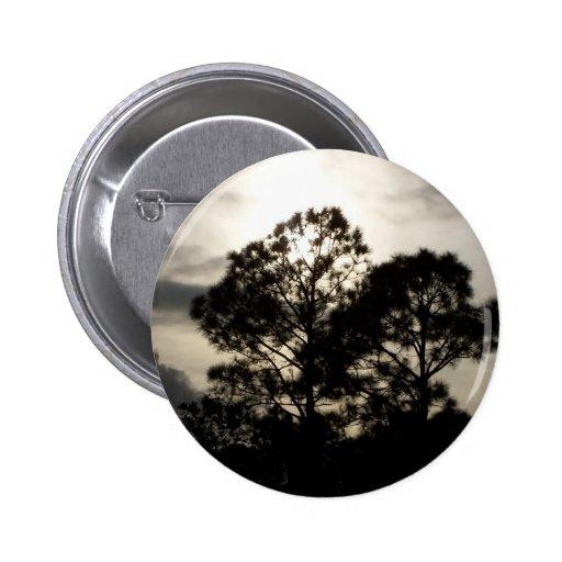 Fotografía surrealista blanco y negro de los árbol
