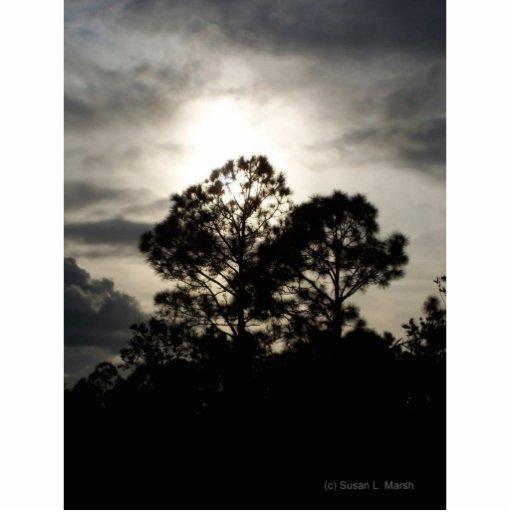 Fotografía surrealista blanco y negro de los árbol adorno fotoescultura