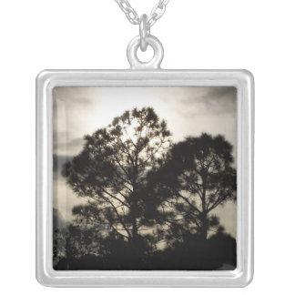 Fotografía surrealista blanco y negro de los árbol colgante cuadrado