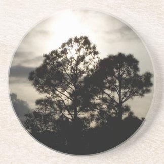 Fotografía surrealista blanco y negro de los árbol posavasos diseño