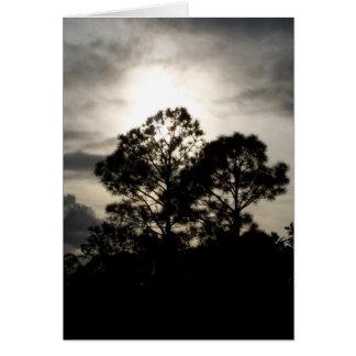Fotografía surrealista blanco y negro de los árbol tarjeta