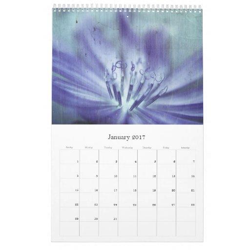 Fotografía texturizada 3 - calendario 2011