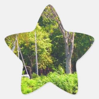 Fotografía verde de la naturaleza de Boston los Pegatina En Forma De Estrella