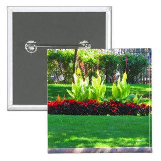 Fotografía verde de la naturaleza de Boston los Pin Cuadrado