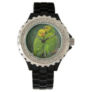 Fotografía verde de los pájaros del amor de los relojes de mano