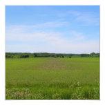 Fotografía verde del arte de las tierras de anuncios