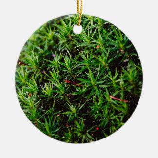 Fotografía verde del primer del musgo adorno navideño redondo de cerámica