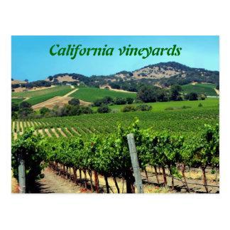fotografía verde del viñedo tarjeta postal